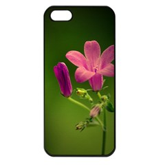 Campanula Close Up Apple Iphone 5 Seamless Case (black)