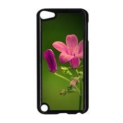 Campanula Close Up Apple iPod Touch 5 Case (Black)