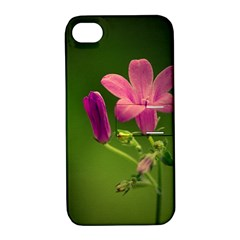 Campanula Close Up Apple Iphone 4/4s Hardshell Case With Stand