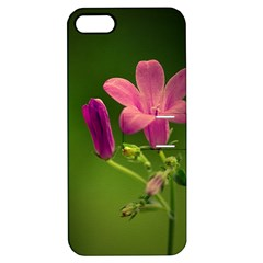 Campanula Close Up Apple iPhone 5 Hardshell Case with Stand