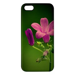 Campanula Close Up iPhone 5 Premium Hardshell Case