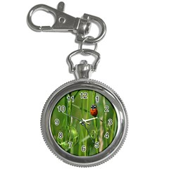 Ladybird Key Chain & Watch