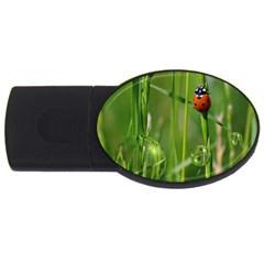 Ladybird 2GB USB Flash Drive (Oval)