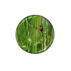 Ladybird Golf Ball Marker (for Hat Clip)