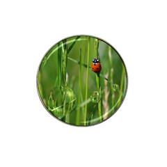 Ladybird Golf Ball Marker 4 Pack (for Hat Clip)