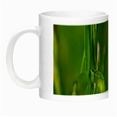 Ladybird Glow In The Dark Mug