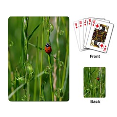 Ladybird Playing Cards Single Design