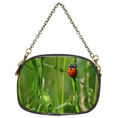 Ladybird Chain Purse (one Side)