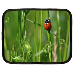 Ladybird Netbook Case (XXL)
