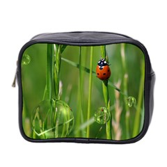 Ladybird Mini Travel Toiletry Bag (two Sides)