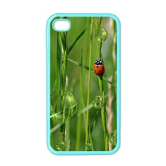 Ladybird Apple iPhone 4 Case (Color)