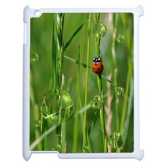 Ladybird Apple iPad 2 Case (White)