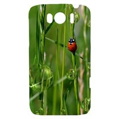 Ladybird HTC Sensation XL Hardshell Case
