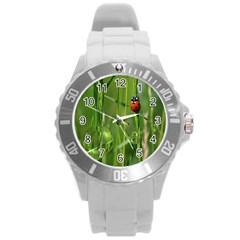 Ladybird Plastic Sport Watch (large)