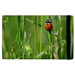Ladybird Apple iPad 2 Flip Case