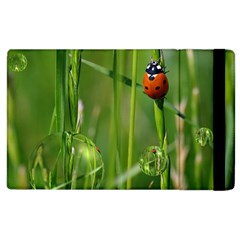 Ladybird Apple Ipad 3/4 Flip Case