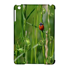 Ladybird Apple Ipad Mini Hardshell Case (compatible With Smart Cover)