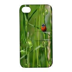 Ladybird Apple iPhone 4/4S Hardshell Case with Stand