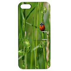 Ladybird Apple Iphone 5 Hardshell Case With Stand