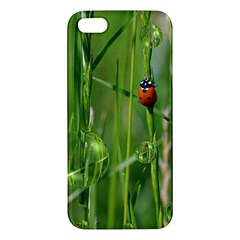Ladybird iPhone 5 Premium Hardshell Case