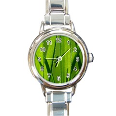 Grass Round Italian Charm Watch