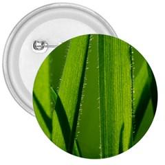 Grass 3  Button