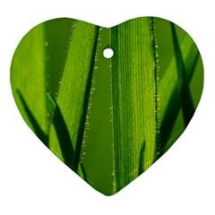 Grass Heart Ornament