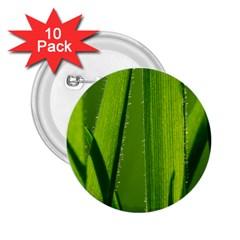 Grass 2 25  Button (10 Pack)