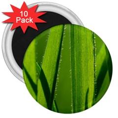 Grass 3  Button Magnet (10 Pack)