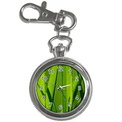 Grass Key Chain & Watch