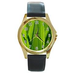 Grass Round Metal Watch (gold Rim)