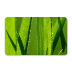 Grass Magnet (Rectangular)