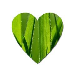 Grass Magnet (Heart)