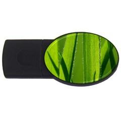 Grass 4GB USB Flash Drive (Oval)