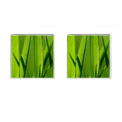 Grass Cufflinks (Square)