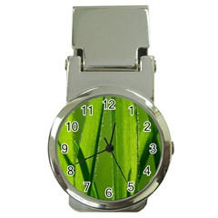 Grass Money Clip With Watch