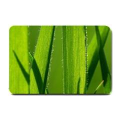 Grass Small Door Mat