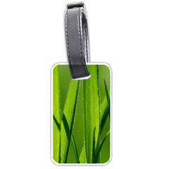Grass Luggage Tag (Two Sides)