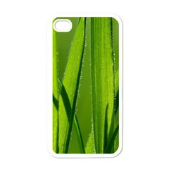 Grass Apple Iphone 4 Case (white)