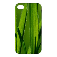 Grass Apple Iphone 4/4s Premium Hardshell Case
