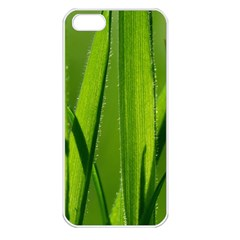 Grass Apple iPhone 5 Seamless Case (White)
