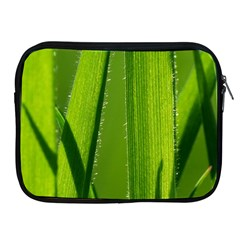 Grass Apple Ipad 2/3/4 Zipper Case