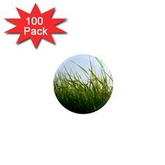 Grass 1  Mini Button Magnet (100 pack)