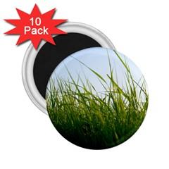 Grass 2.25  Button Magnet (10 pack)