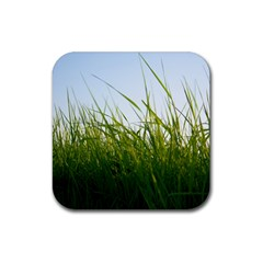 Grass Drink Coasters 4 Pack (square)