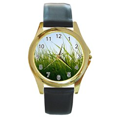 Grass Round Metal Watch (Gold Rim)