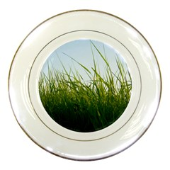 Grass Porcelain Display Plate