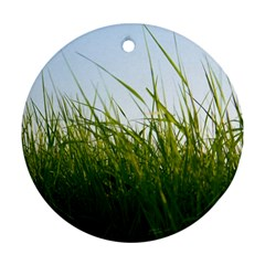 Grass Round Ornament (Two Sides)