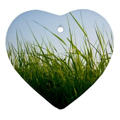 Grass Heart Ornament (two Sides)