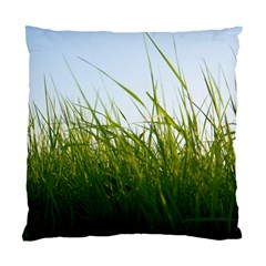 Grass Cushion Case (Two Sided)